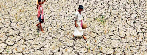 Continuous dry spell to damage standing crops in Marathwada