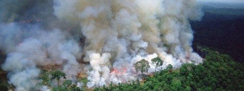Amazon wildfire: Brazil may turn down G7 assistance