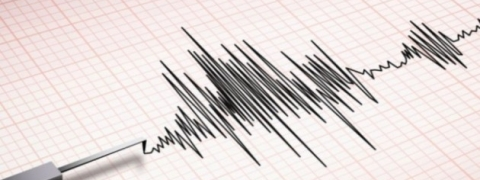 Mild tremors felt in Palghar