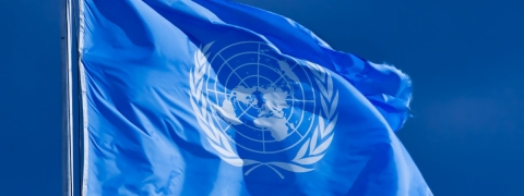 Indian to head UN Yemen observation team