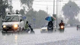 Heavy rain alert issued in MP