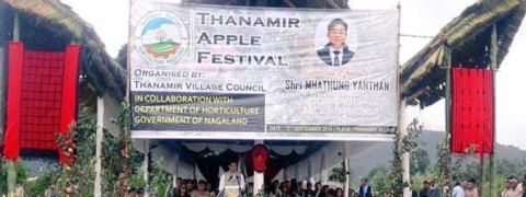 Nagaland celebrates 8th Thanamir Apple Festival