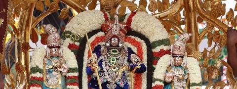 Twelve trainee IAS officers at Tirumala Brahmotsavams