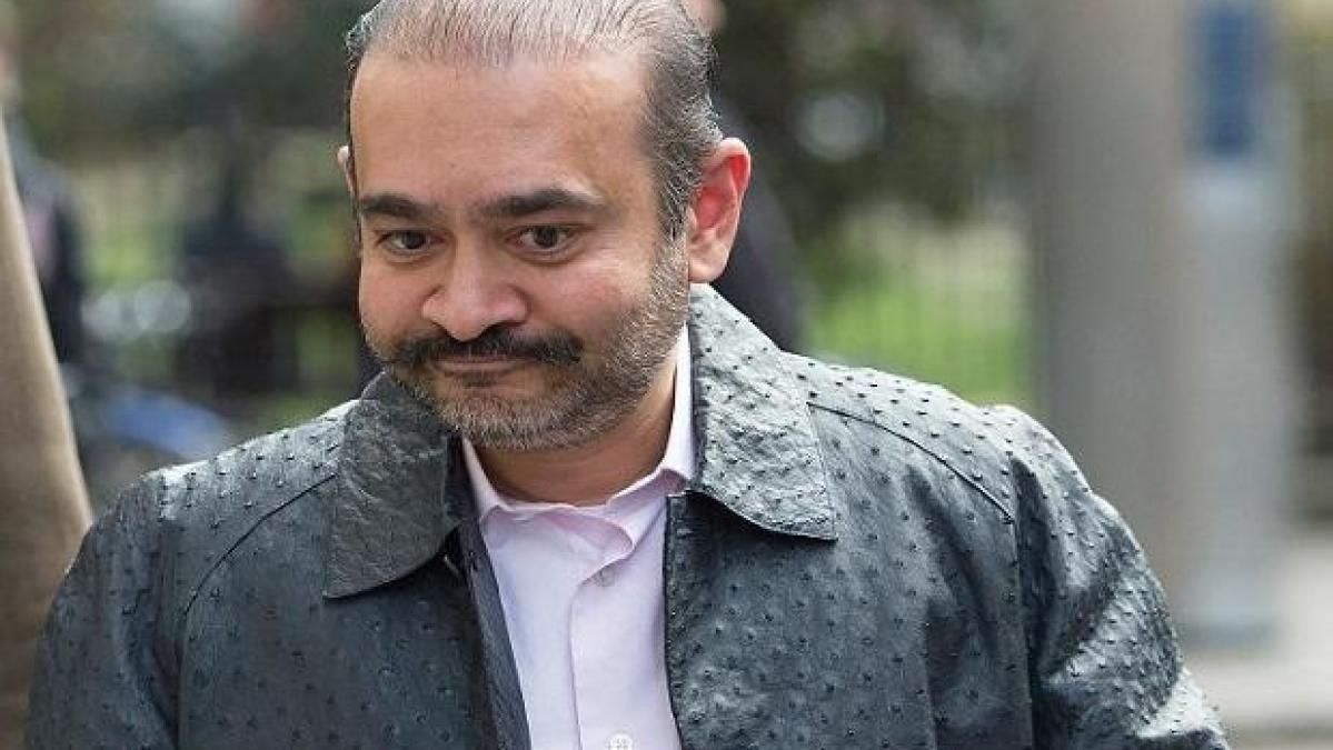 اگر مجھے ہندوستان کے حوالے کیا گیا تو میں خودکشی کر لوں گا: نیرو مودی
