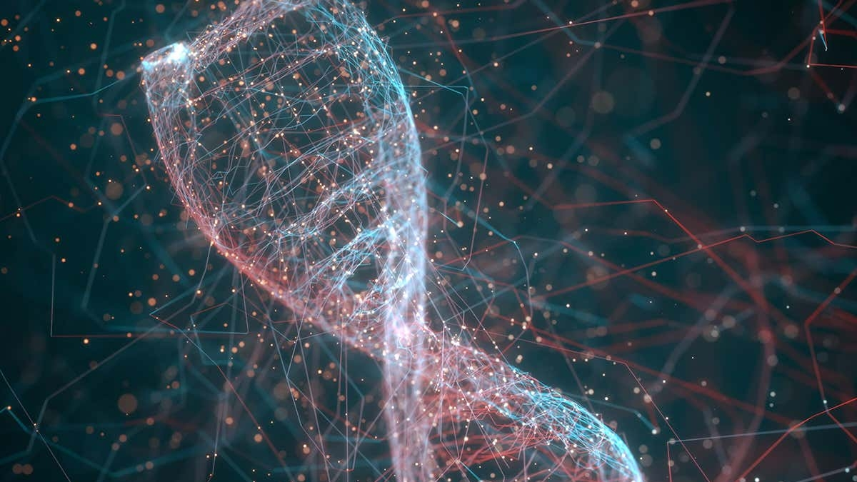 ڈی این اے: جسم کی بناوٹ کے راز کھولنے والی چابی، ساتویں قسط... وصی حیدر
