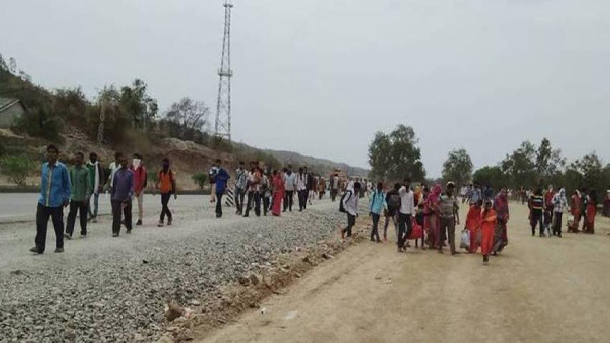 لاک ڈاؤن: گجرات سے پیدل لوٹنے کو مجبور راجستھان کے ہزاروں بے یار و مددگار مزدور