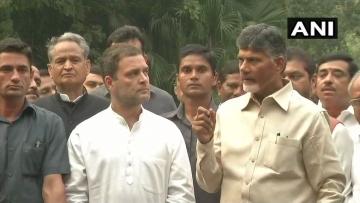 राहुल गांधी और चंद्रबाबू नायडू साथ-साथ