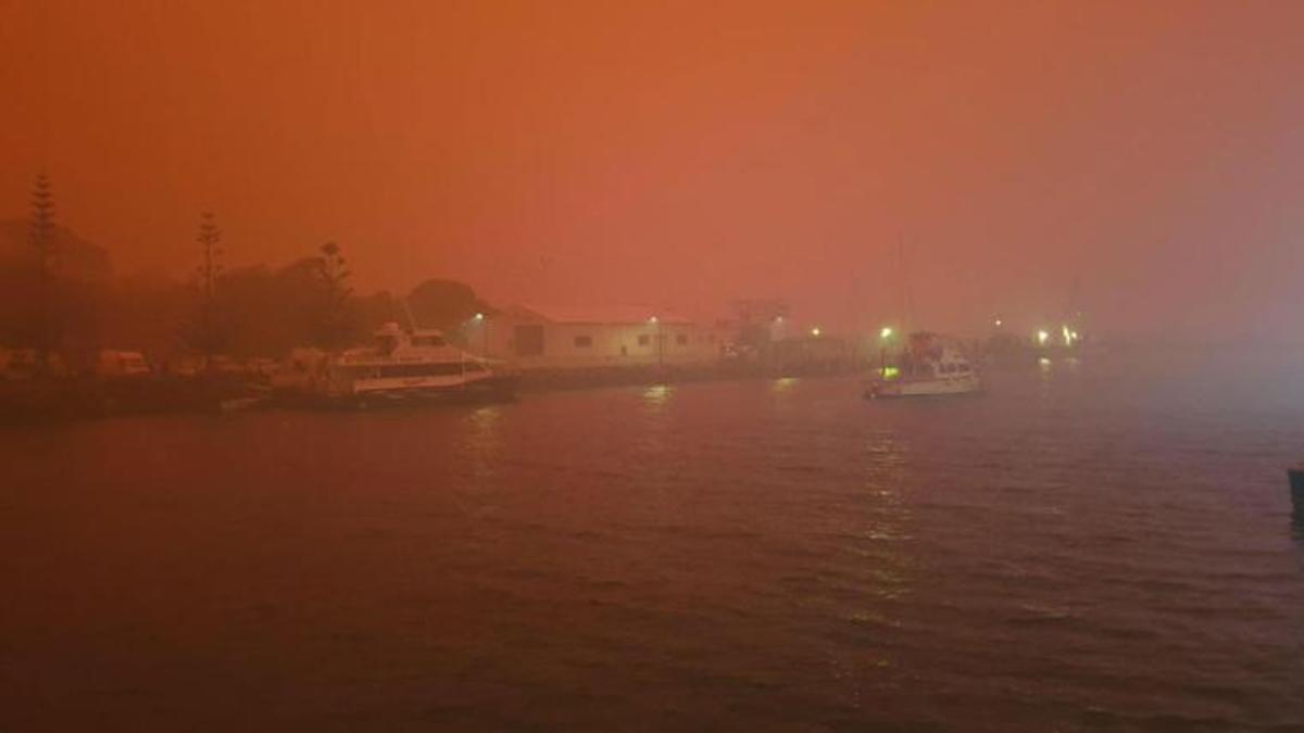 ऑस्ट्रेलिया के जंगलों में लगी आग, लगभग 50 करोड़ जानवर जलकर मरे