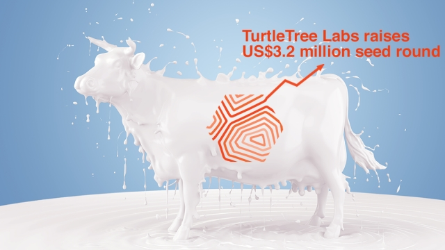 KBW Ventures joins investors as TurtleTree Labs raises US$3.2 million seed round