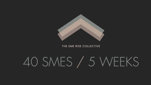 SME RISE COLLECTIVE - Forty SMEs now supported in five weeks