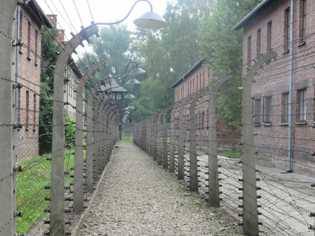 Barbed fences across the vast auxiliary concentration camp at Birkenau.
