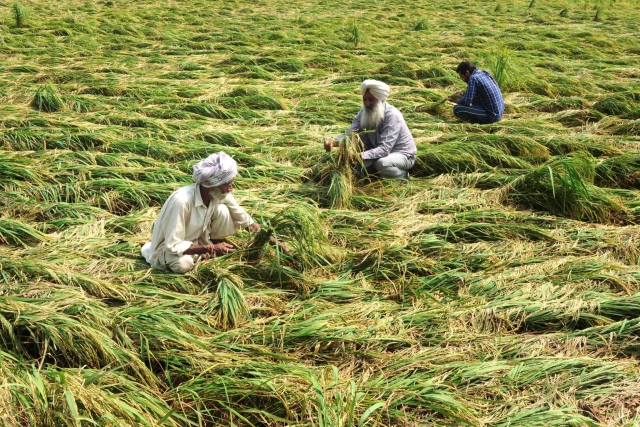 Agri Reforms Of 15 May 2020: Where The Sum Is Far Greater Than The Parts