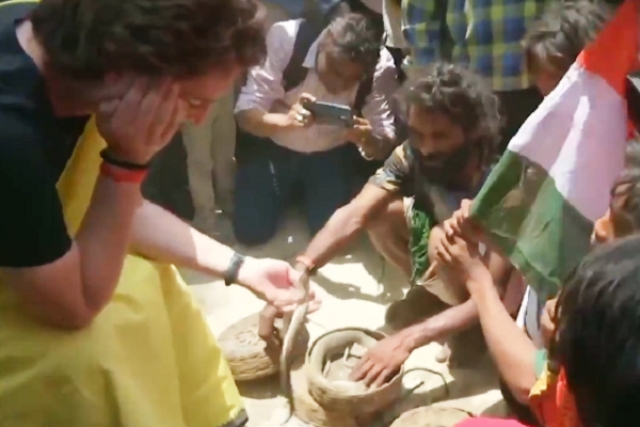 Priyanka Vadra Fails To 'Charm' PETA Over Snake Charmer Stunt; Gets Slammed For Playing With Snakes