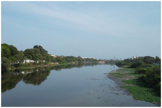 The Cooum River in Chennai. (Sankar.s/Wikipedia)