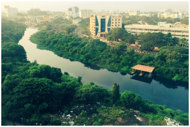 The Cooum Of Madras