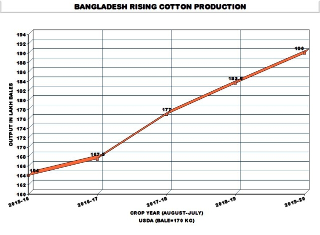 Bangladesh Conducts Field Trials Of Bt Cotton Even As India Drags Its Feet On New GM Crops