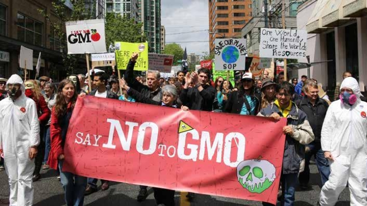 GM Crops Debate: Naming The Missing Links, Ethics And Safety