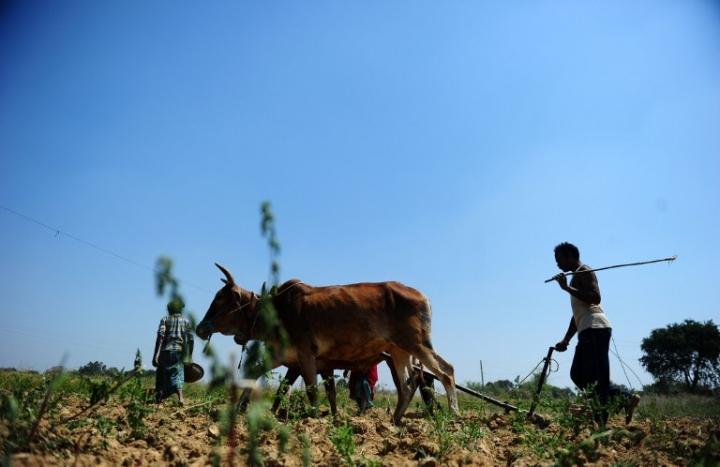 Without Technology, New Crop Insurance Scheme Will Sink in Frauds And Losses