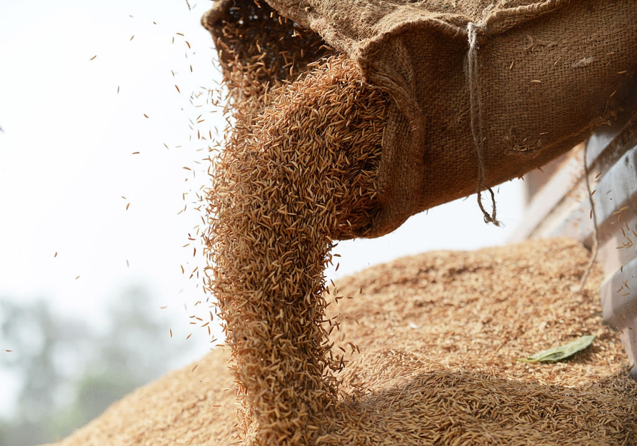 India food grain (ROBERTO SCHMIDT/AFP/Getty Images)