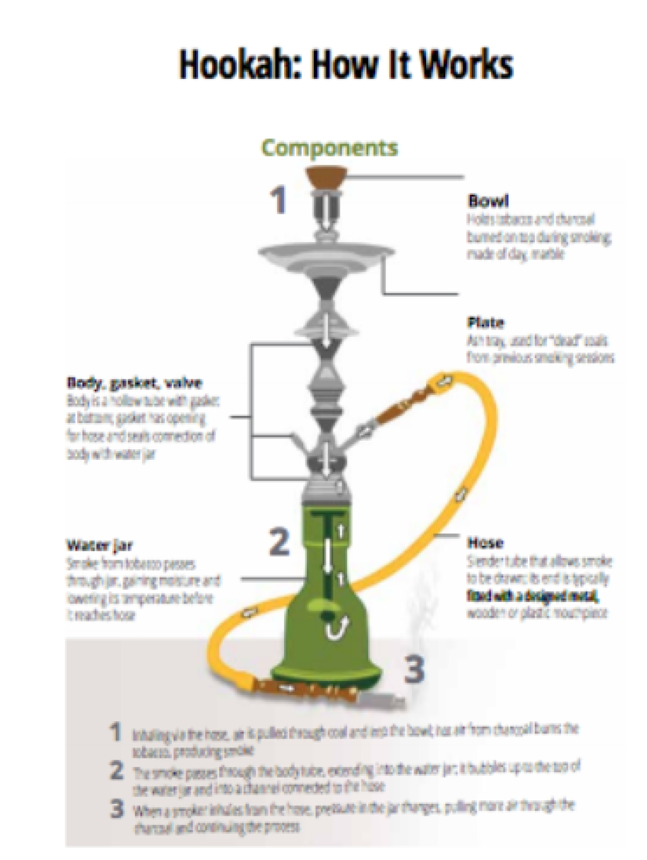 The well-crafted hookah evokes an image of feminine beauty with its elegant and curvy profile