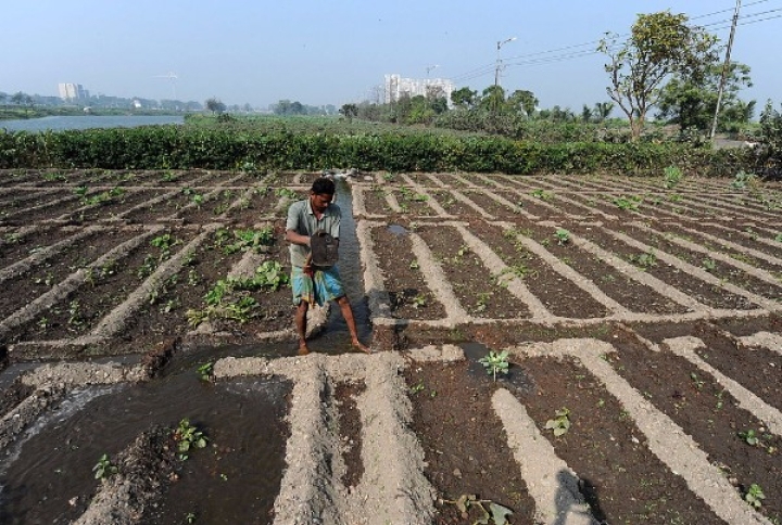 Relief For Drought-Prone Areas As Govt Kickstarts 99 Stalled Irrigation Projects