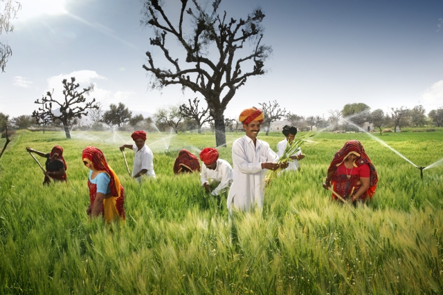 Agriculture Must Shift From 'Green Revolution' To 'Green Methods', Says Economic Survey