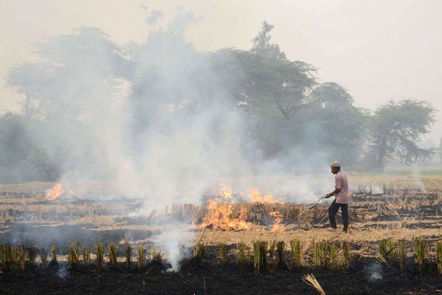 Corporates Must Promote Conservation Agriculture in Punjab To End the Menace of Stubble-Burning in Fields