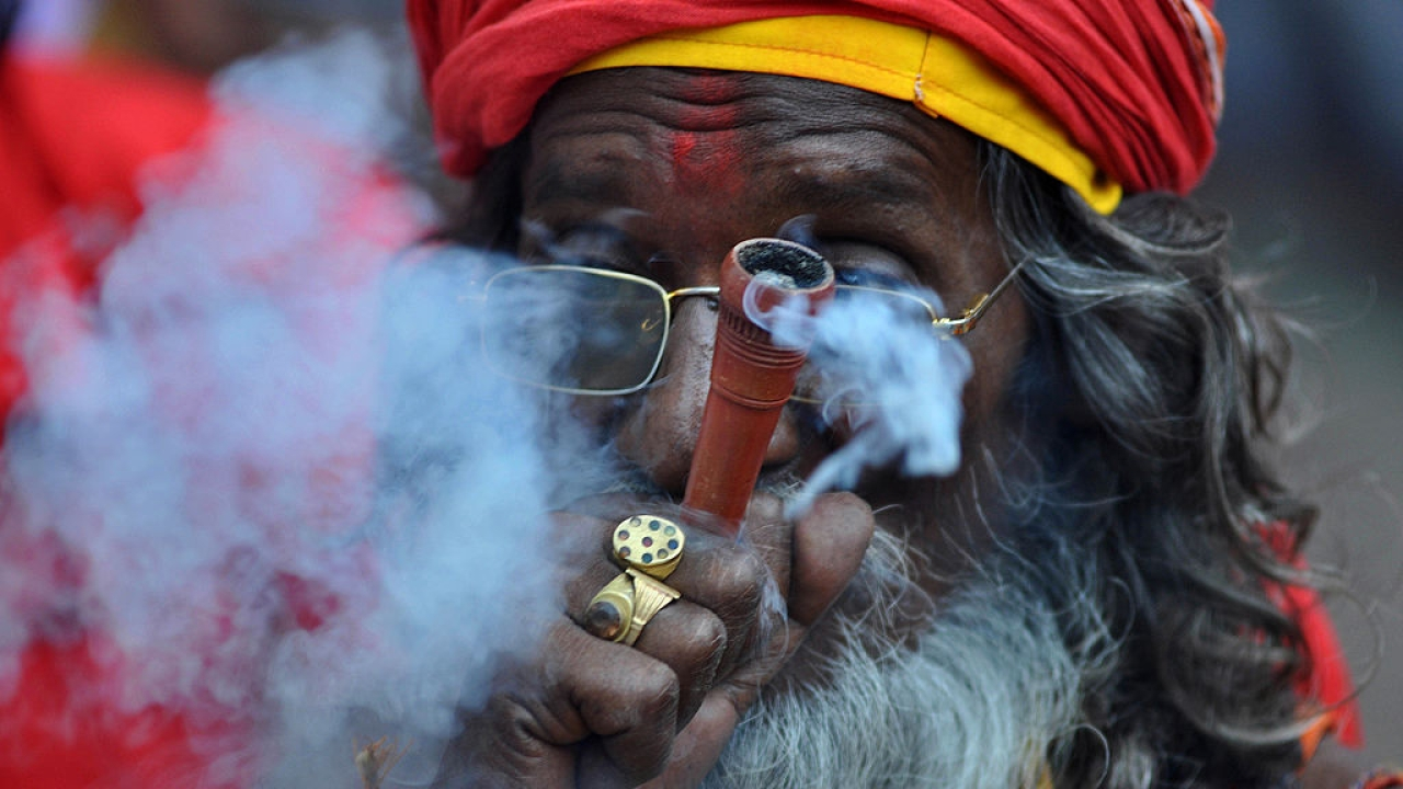 Will Marijuana Be Legalised In India? It's  Up For Debate In Lok Sabha