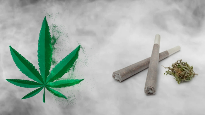 the unsuccessful quest to legalize marijuana use Four presidents have personally waged war on drugs unfortunately the boggs act of 1951 drastically increased the penalties for marijuana use.