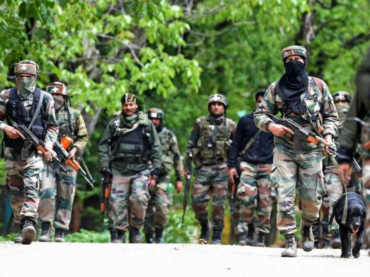 Jammu And Kashmir: Security Forces Gun Down Three Hizbul Mujahideen Terrorists In An Encounter In Pulwama