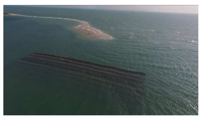 Saving Sinking Islands: Tamil Nadu Deploys Artificial Reefs In A First For India