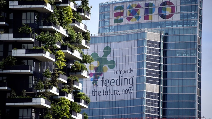 Disappearing Green Cover: Vertical Forests To The Rescue Of Cities