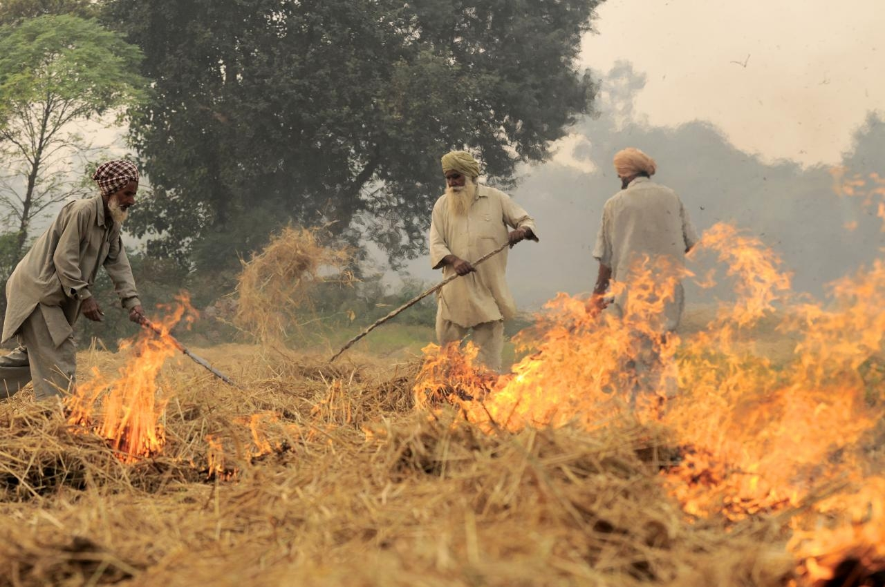 Crop stubble being burnt in Punjab (CIAT/Wikimedia Commons)