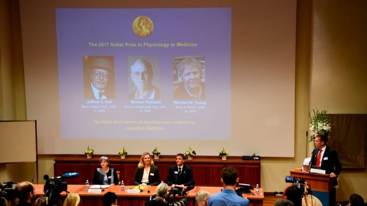 This Year's Nobel Prize In Medicine Puts Fresh Focus On Ayurveda