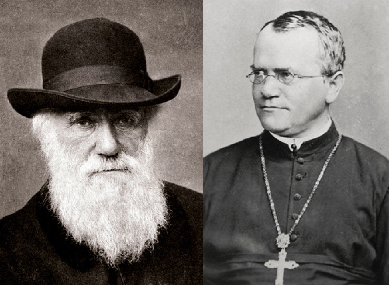 Charles Darwin and Gregor Mendel: two great giants of biological sciences.