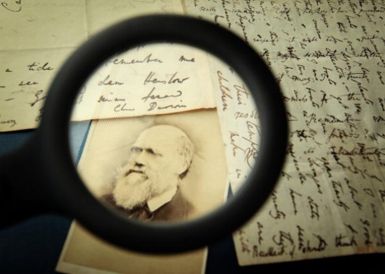Original letters from Charles Darwin are displayed at the Herbaruim library at the Royal Botanic Gardens, Kew in London. (Peter Macdiarmid/Getty Images)