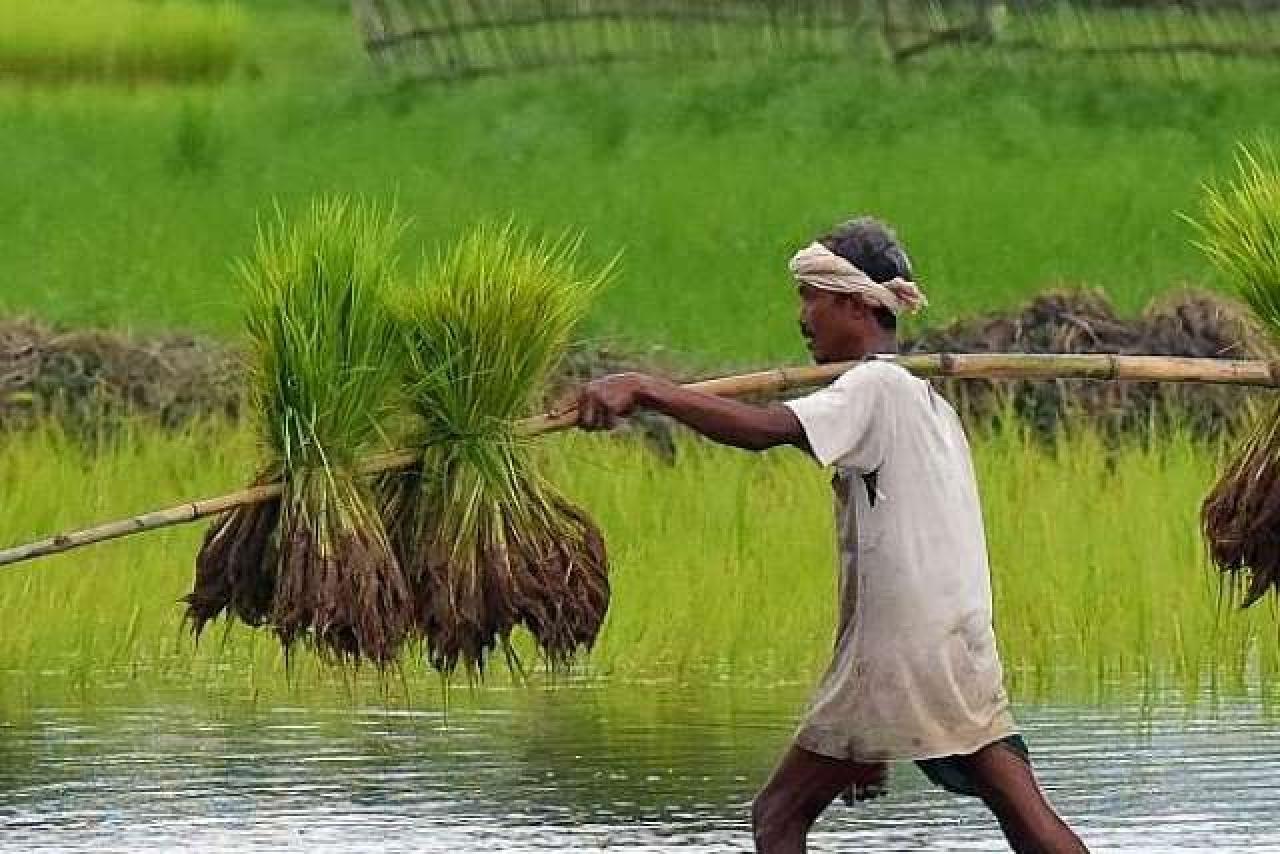 Better Than Loan Waiver? Uttarakhand Farmers Will Soon Get Zero ...