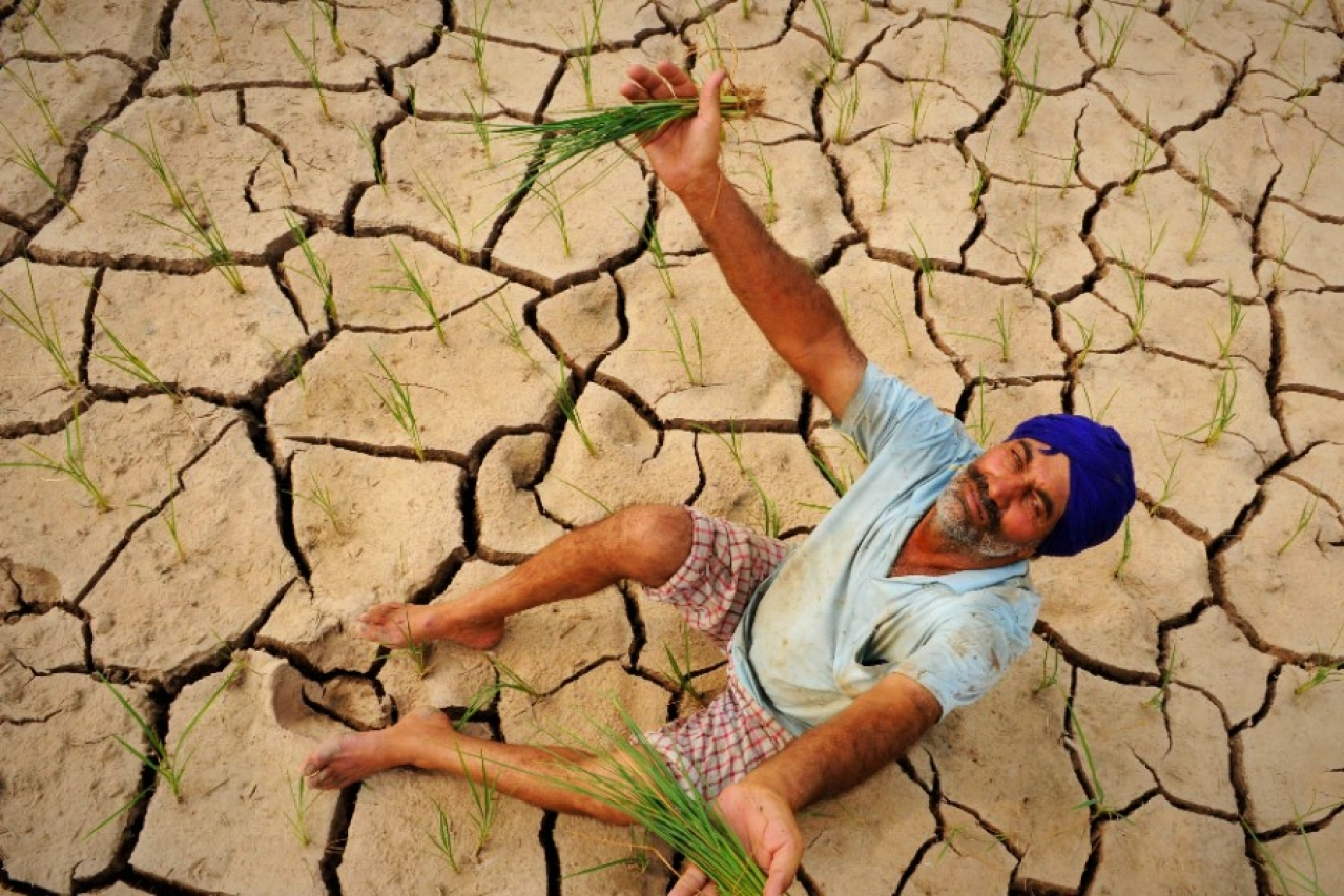 It is the farm policies that are failing the Indian farmer. (Bharat Bhushan/Hindustan Times via Getty Images))