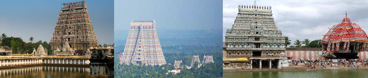 Nataraja Temple, Chidambaram, Sri Ranganathaswamy Temple,<b> </b>Srirangam, and Thiyagaraja Temple, Thiruvarur, today: Almost all major Hindu temples throughout India have seen the massacre of devotees, who sacrificed their lives to preserve the deity and temple  for posterity.