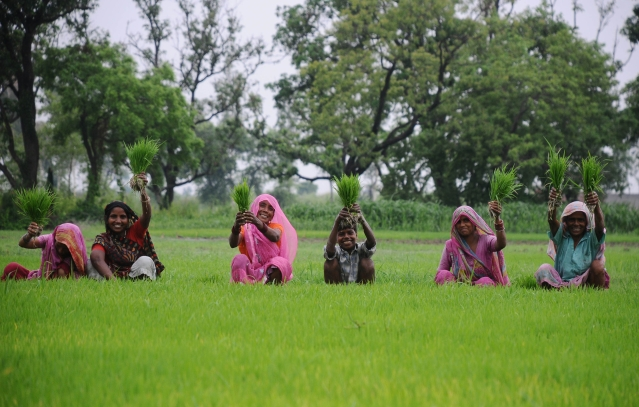 Eve Power: Economic Survey Shows Rise In Number Of Women Farmers