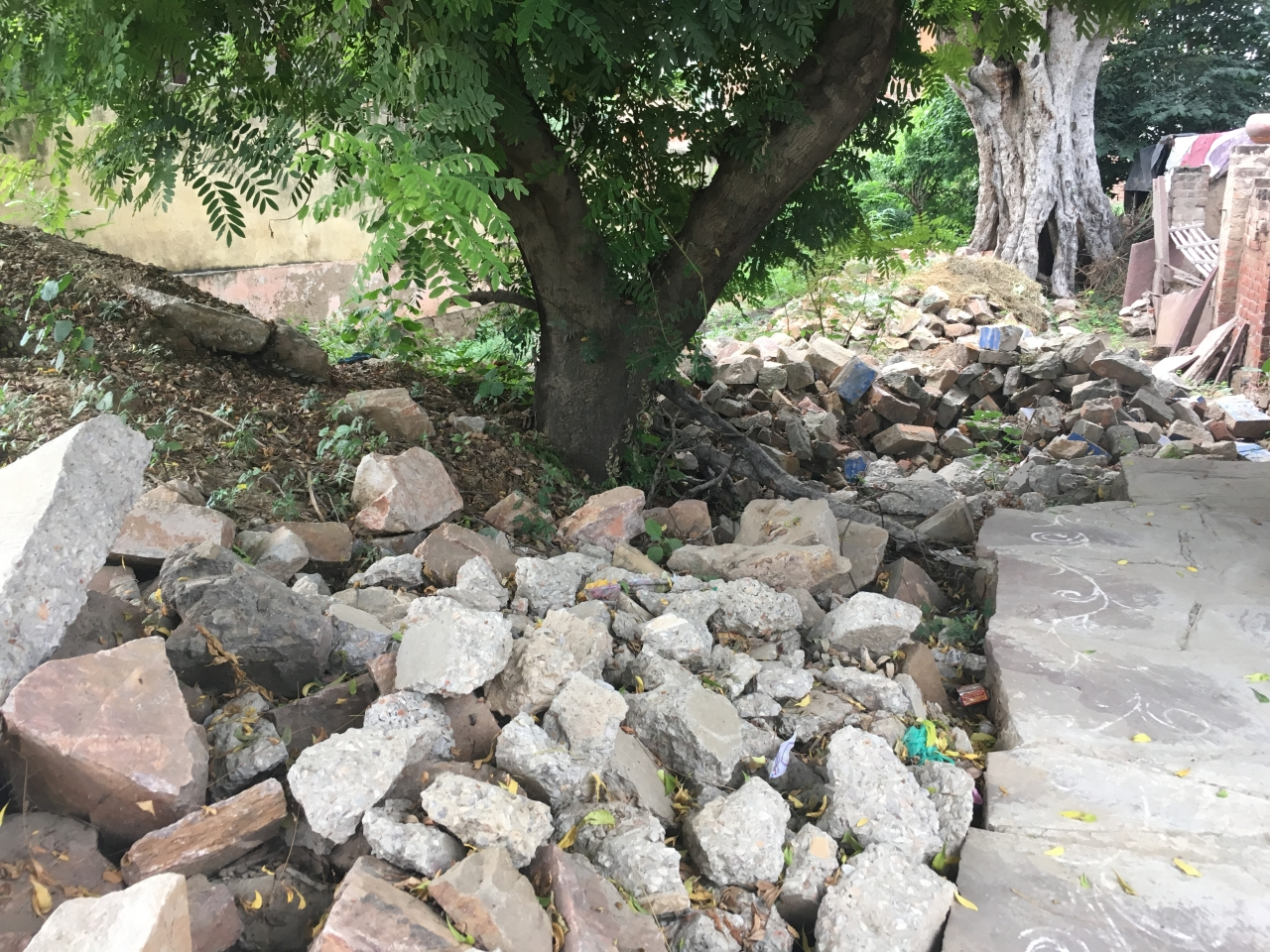 Ramesh Sharma has placed huge stones on a plot adjoining his house that once served as shelter for the cows.