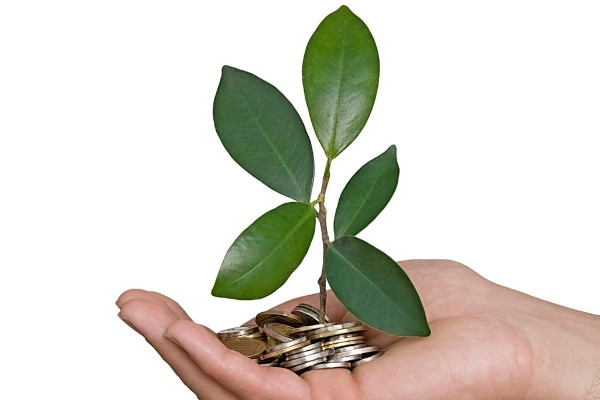 SBI To Raise $500 Million Through Green Bonds To Fund Eco-Friendly Projects