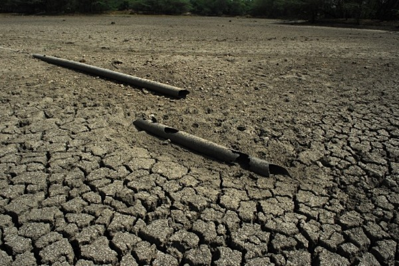 After Floods Now Drought? High- Temperature Increases Fear Of Drought In Parts Of Kerala