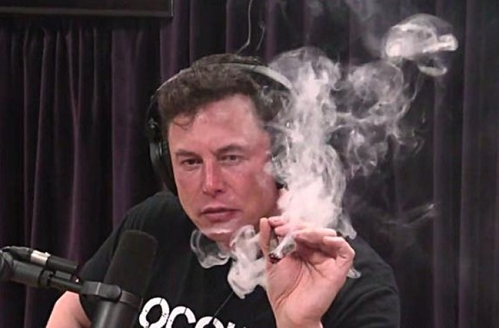Tesla Shares Crash After Elon Musk Appears On Live Web Show Smoking Marijuana