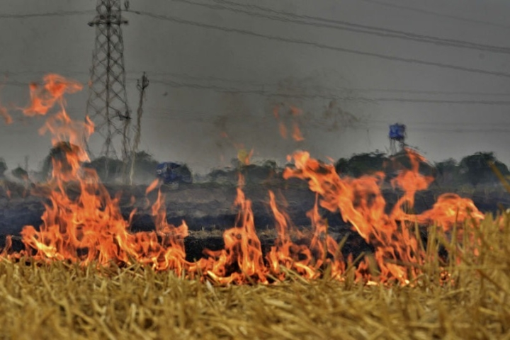 Stubble Burning Incidents Down By 41 Per Cent, Zero Instances In Over 4500 Villages In Punjab And Haryana In 2018