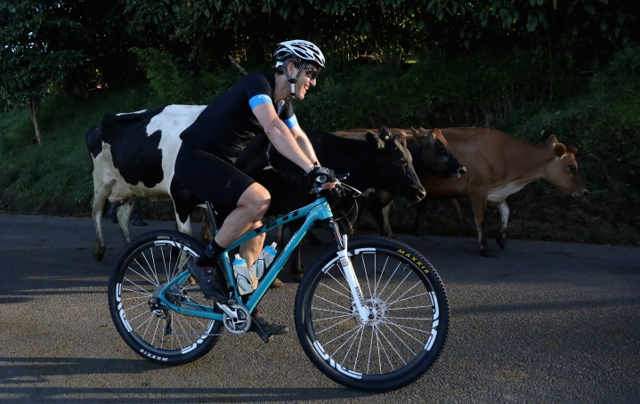 'Gau Raksha' Goes Hi Tech, But In Australia: Scientists Invent GPS Fitness Tracker That Helps Monitor Bovines