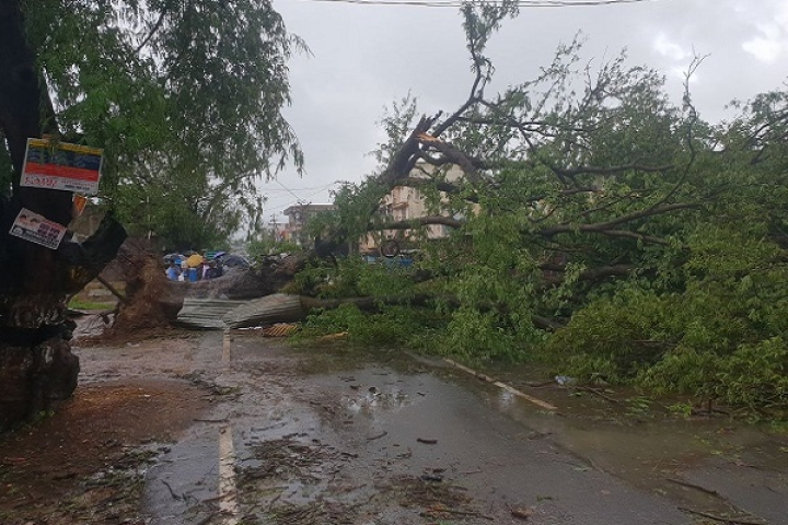 Twenty-Two Lives Lost As Cyclone Gaja Makes Landfall In TN: Universities Postpone Exams, Coasts Most Affected