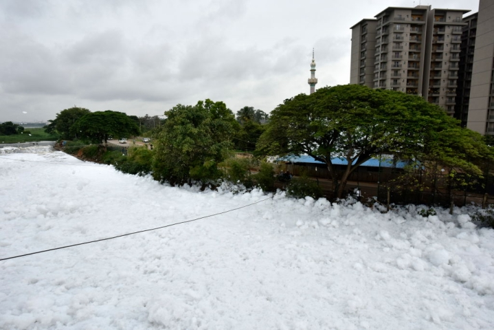 BDA Floats A Rs 250 crore Tender For Desilting, Rejuvenation And Development of Bellandur Lake In Bengaluru