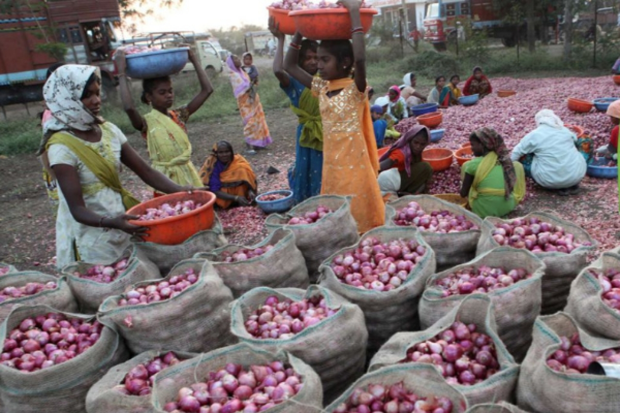 Workers sort out onions at a godown at Lasalgaon, near Nasik. (Santosh Harare/Hindustan Times via Getty Images)