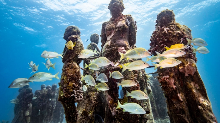 Underwater Tourism In India: First Museum To Open In Puducherry's Deep Seas
